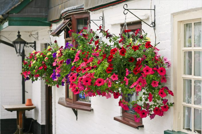 Ye Olde Two Brewers - Pubs in Bloom Winners 2015